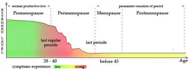 What Are The Symptoms Of Menopause And Low Estrogen Levels