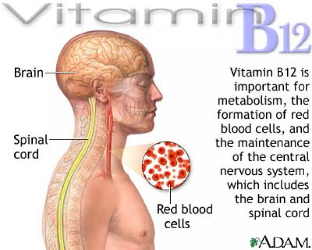 Vitamin B12 or Cobalamin